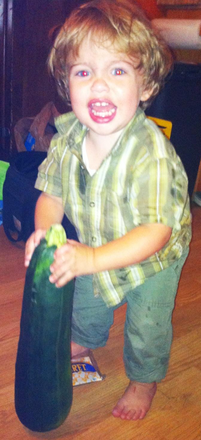 Zucchini 002